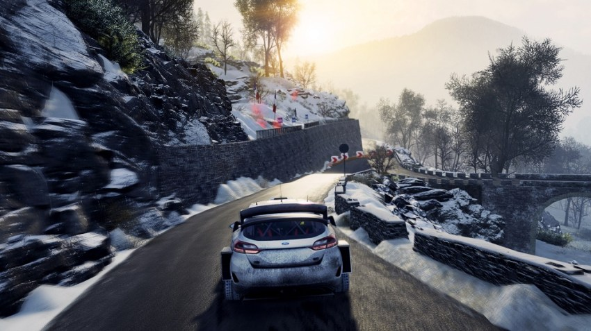 WRC 8 review - Twigs and leaves in the fuel 8