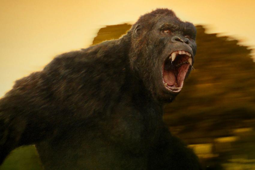 Godzilla vs Kong likely heading to streaming as Netflix, HBO Max engage in bidding war 6