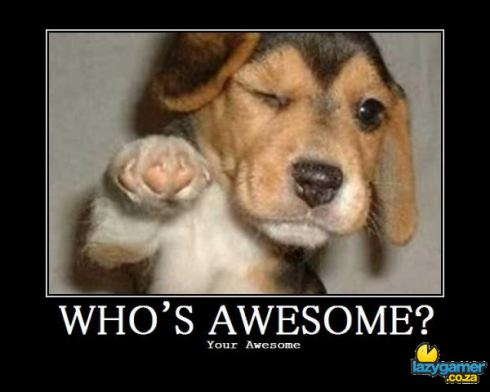 whos awesome