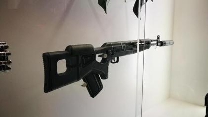 Destiny 2 guns (5)