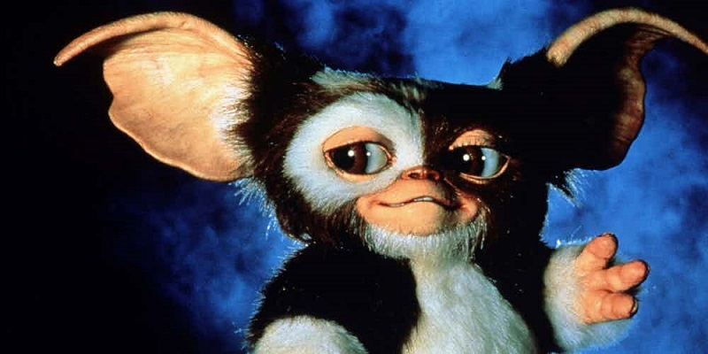 Chris Columbus talks Gremlins 3; will return the franchise to its darker roots 3
