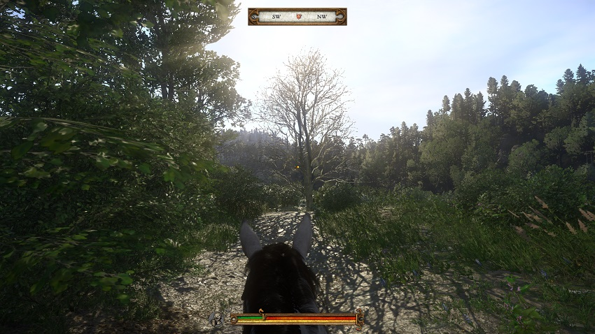 Kingdom Come: Deliverance review in progress - Czech yourself 8