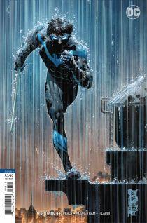 Nightwing (2)