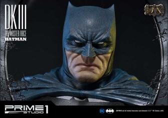 Dark Knight 3 master race (16)