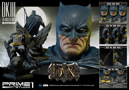 Dark Knight 3 master race (4)
