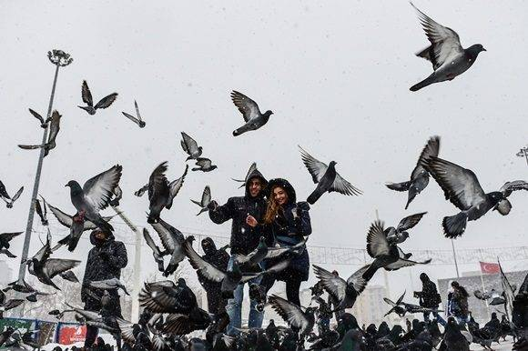 People walk next to pigeons on Taksim square during snowfalls in Istanbul on January 7, 2017.  A heavy snowstorm paralysed life in Istanbul with hundreds of flights cancelled and the Bosphorus closed to shipping traffic. The snowstorm dumped almost 40 centimetres (16 inches) of snow in parts of the Turkish metropolis overnight, causing havoc on roads as travellers sought to leave the city for the weekend getaway. / AFP PHOTO / YASIN AKGUL