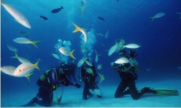 feria-internacional-de-turismo-cuba-2017-mar