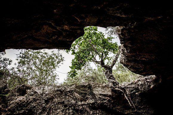 La Cueva de los Panaderos constituye uno de los principales atractivos arqueológicos del patrimonio de Gibara, ciudad costera ubicada al norte de la provincia de Holguín, Cuba, el 24 de mayo de 2017. ACN FOTO/Juan Pablo CARRERAS