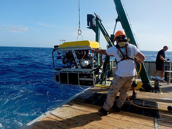 El ROV solo se lanzaba si la corriente era menor a 20 nudos para no dañar el equipo. Foto: Patricia González/ ICIMAR.