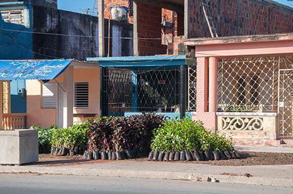 Foto: Vania López Dias