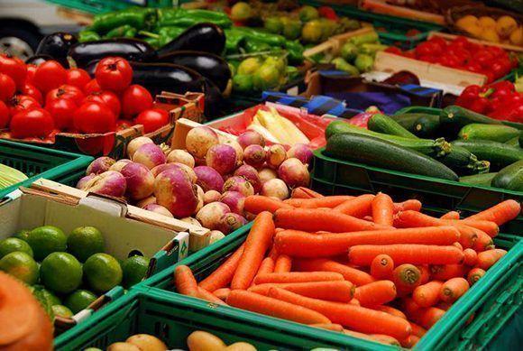 Los costos de la importación de alimentos este año superarán en un seis por ciento los de 2016. Foto: Global Xport.
