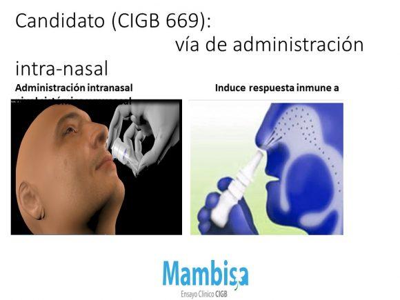 mambisa 2