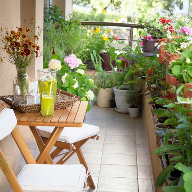 Balcony Design Ideas For Indian Homes And Apartments Design Cafe