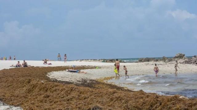 Algunas personas disfrutan de la playa a pesar de las algas.