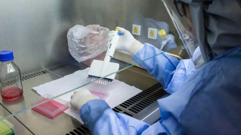 El Instituto Malbrán descartó que haya una cepa argentina del nuevo coronavirus