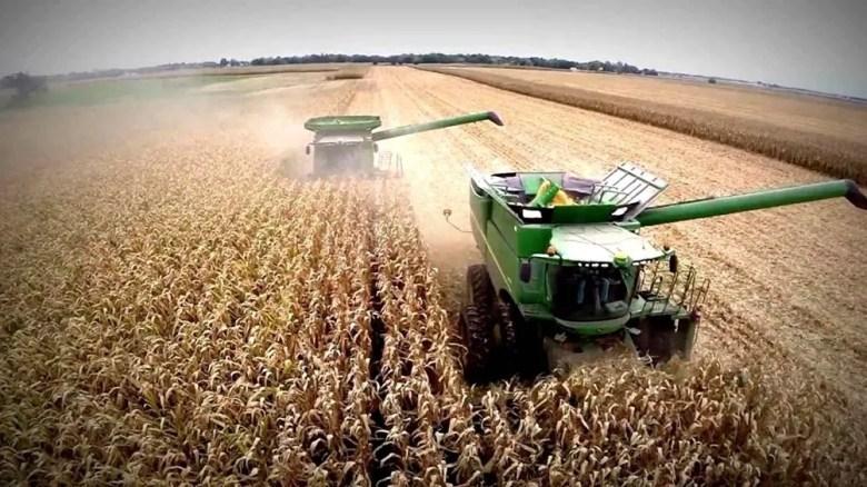 Retenciones: analizan suba para regular los precios de los alimentos.