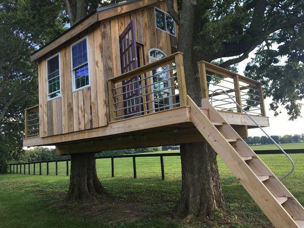 """Comment faire une maison sur un arbre: types de """"bâtiments"""", recommandations, étapes de construction"""