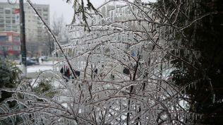 freeezing rain in Bucuresti polei in bucuresti iarna zapada viscol cod portocaliu (105)