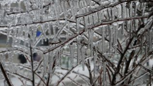 freeezing rain in Bucuresti polei in bucuresti iarna zapada viscol cod portocaliu (108)