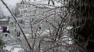 freeezing rain in Bucuresti polei in bucuresti iarna zapada viscol cod portocaliu (112)