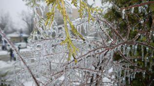 freeezing rain in Bucuresti polei in bucuresti iarna zapada viscol cod portocaliu (116)