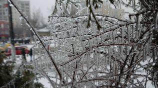 freeezing rain in Bucuresti polei in bucuresti iarna zapada viscol cod portocaliu (117)