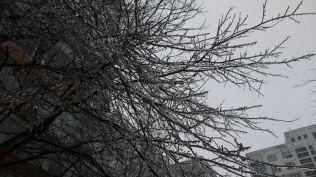 freeezing rain in Bucuresti polei in bucuresti iarna zapada viscol cod portocaliu (141)