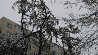freeezing rain in Bucuresti polei in bucuresti iarna zapada viscol cod portocaliu (2)