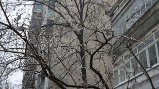 freeezing rain in Bucuresti polei in bucuresti iarna zapada viscol cod portocaliu (29)