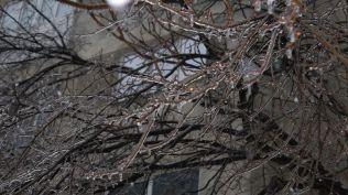 freeezing rain in Bucuresti polei in bucuresti iarna zapada viscol cod portocaliu (51)