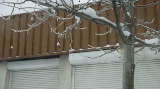 vremea in bucuresti strazi blocate cod portocaliu iarna viscol (37)