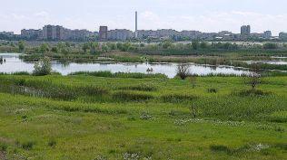 delta bucuresti - lacul vacaresti (575)