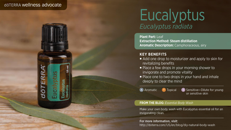 Eucalyptus Oil Dōterra Essential Oils