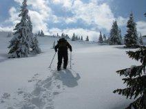 Prin zăpadă la Arieșeni (județul Alba)