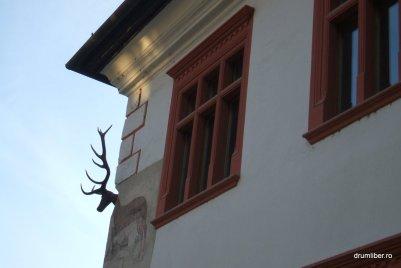 Casa cu cerb din Cetatea Medievală Sighișoara