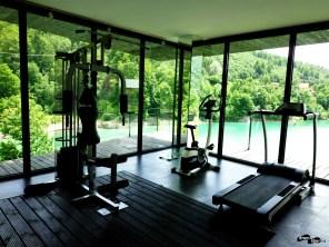 Sala de fitness / forță