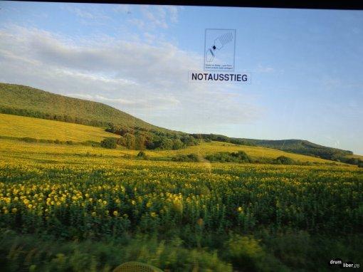Din autocar, pe drum spre Tulcea
