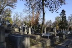 cimitirul Hajongard 4