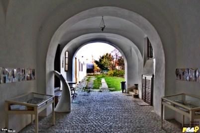 Intrarea în palatul - bibliotecă