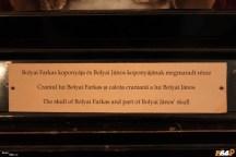 Calota din craniul fiului, Janos