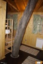 În casa din copac