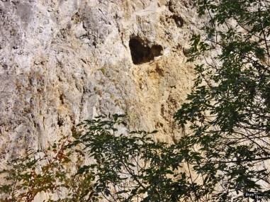 Inima de piatră