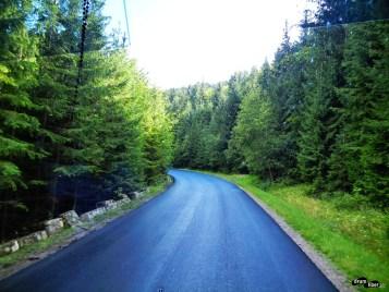 Drumul spre Moldovița