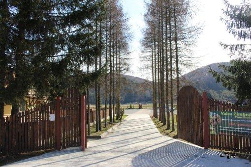 Zimbrăria / Rezervația Valea Zimbrilor, Vama Buzăului (Acriș)