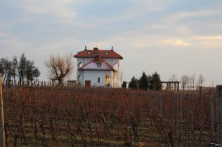 Avincis - Domeniul Drăgușa de la Drăgășani