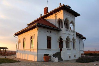 Conacul Drăgușa (Avincis)