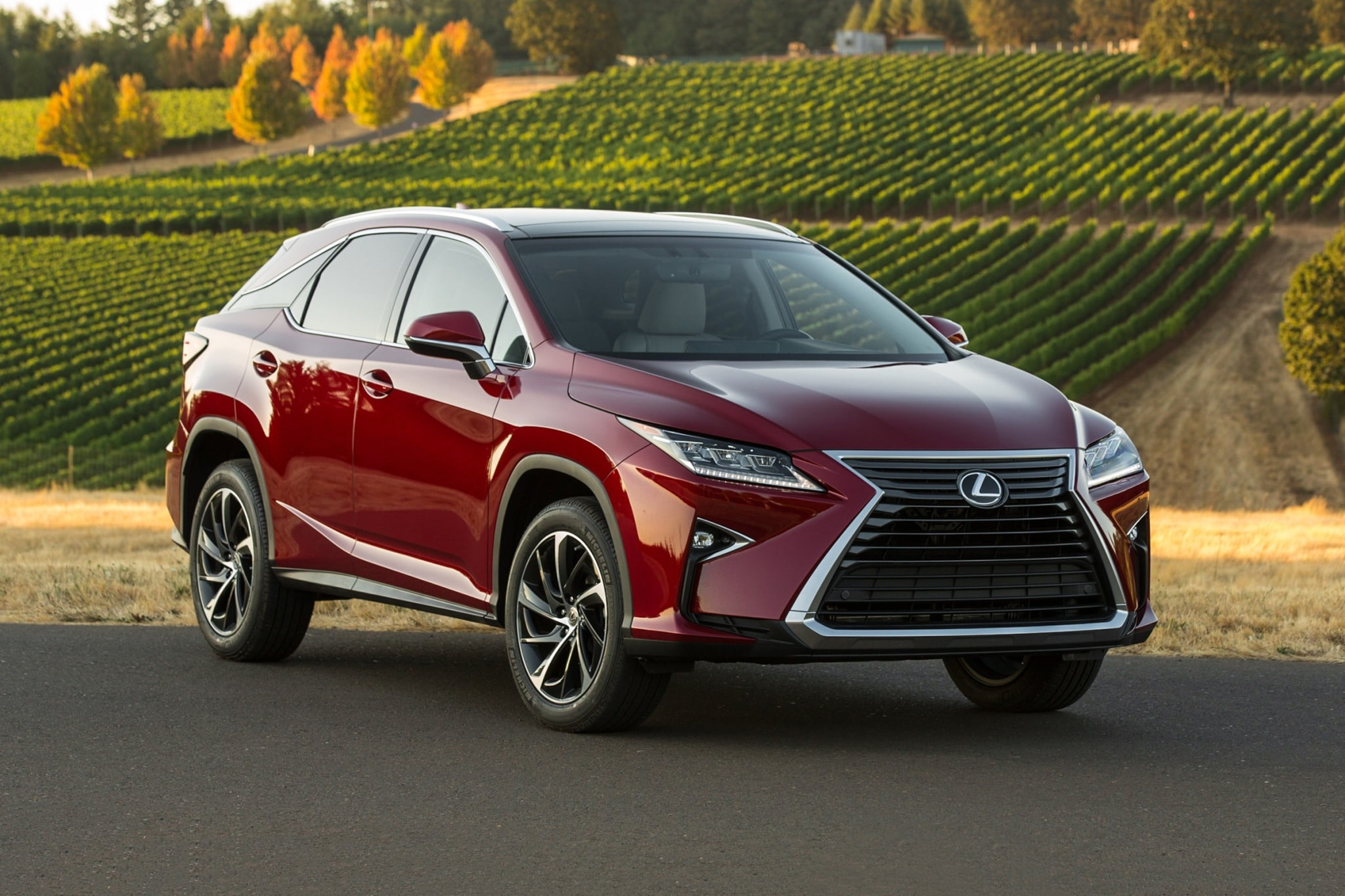 Maintenance Schedule for 2017 Lexus RX 350