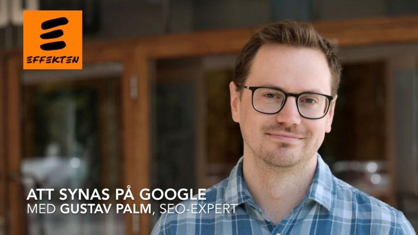 Gustav Palm, SEO-expert