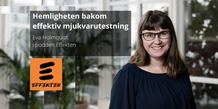 Eva Holmquist, mjukvarutestning