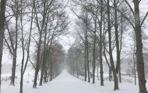 Huvudallén med snö